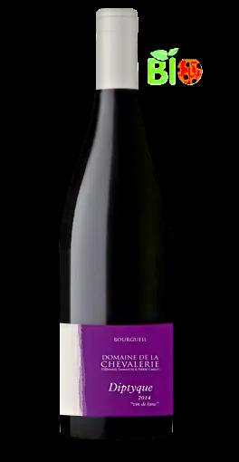 La Chevalerie Bourgueil Cuvée Diptyque