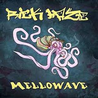 Rick Haze - Mellowwave Cover.jpeg