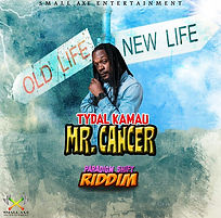 Tydal Kamau - Mr. Cancer.jpg
