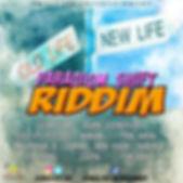 Paradigm Shift Album Cover.jpg