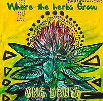 OneDrum_Where_the_herbs_Grow_COVER_ART.j