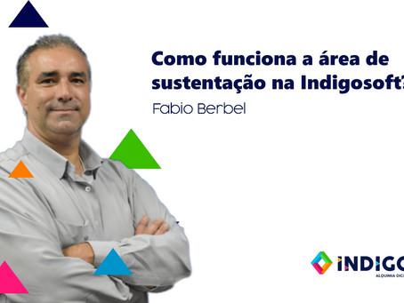 Como funciona a área de sustentação na Indigosoft?