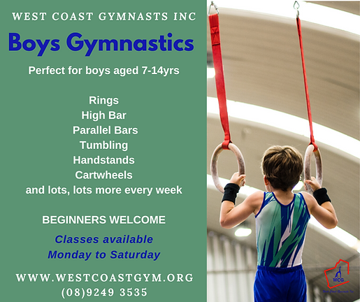 2020 BOYS GymSkills promo.png