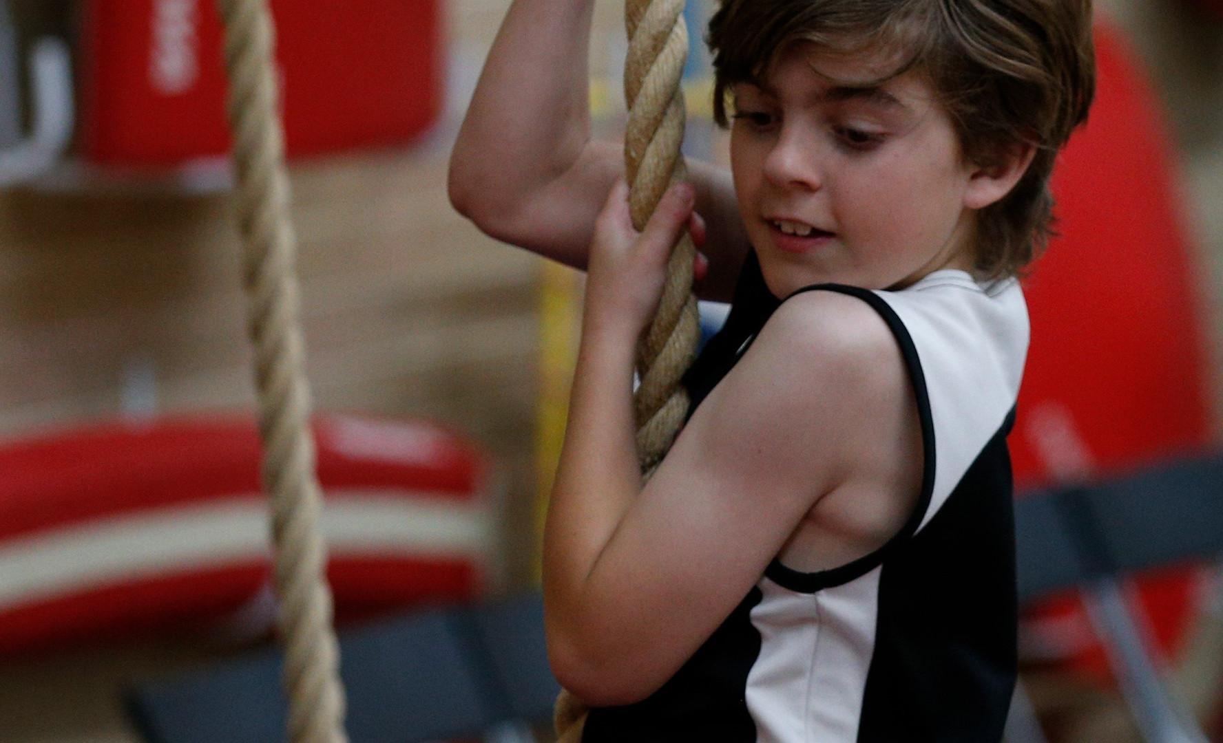 GymnasticsWA-FestivalofGymnastics-10Nov2