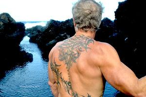 gay male nudist hawaii guest house beach photo bed and breakfast