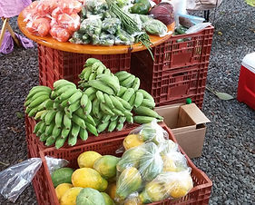 Hawaii farmers market organic near Hawaii Lalala Gay Guest House Bed & Breakfast