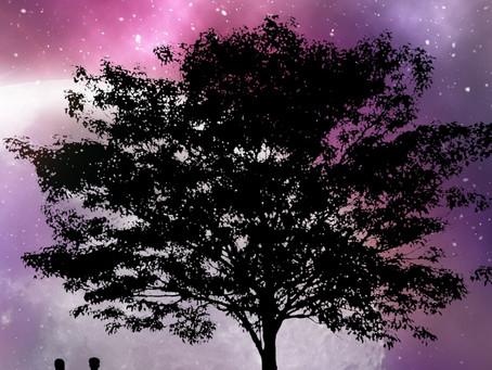 Paranormal Romance SOUL JUMPER by Shalana Battles