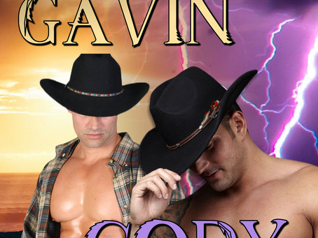 ADULT ROMANCE Gavin and Cody by B.J. Wane