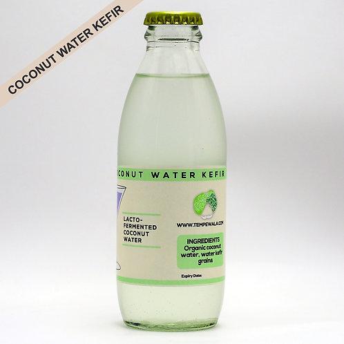 Coconut Water Kefir - 200ml