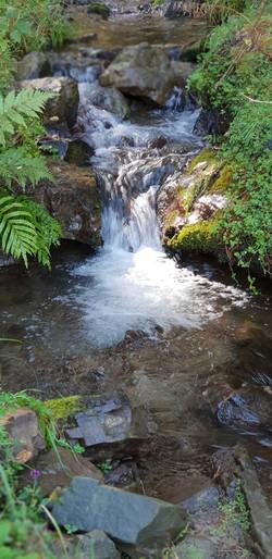 Whakatau stream