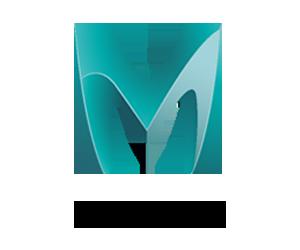 Mudbox.png