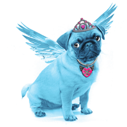 The+Blue+Pug.png