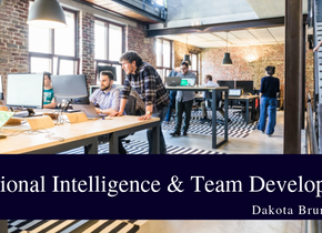 Emotional Intelligence and Team Development