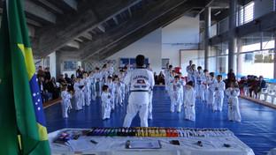 Taekwondo: um esporte que auxilia a vida a vida física e mental