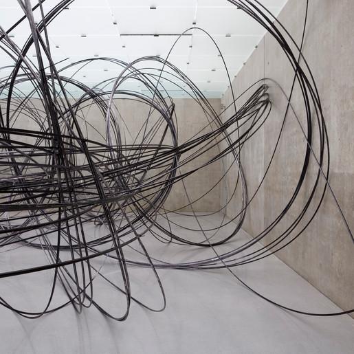 Anthony Gormley - Royal Academy of Arts