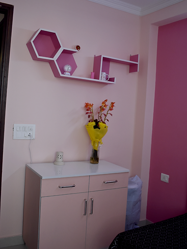 Girls room color theme fo Shelf & Cabinet Deisgn