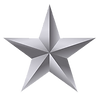 silver star 2.png