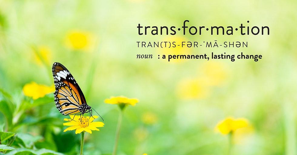 transformation_image_2.jpg