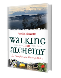 Walking into Alchemy Book ISBN: 9781861519474