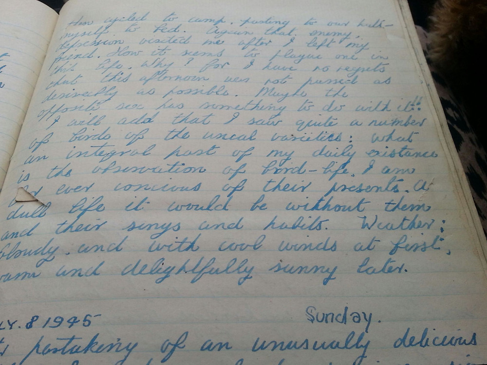One of the beautifully handwritten pages from the diaries