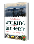 Walking into Alchemy by Amelia Marriette Book ISBN: 9781861519474