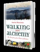 Walking into Alchemy by Amelia Marriette Book ISBN: 9781861519474