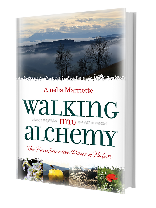 Image of Cover of Walking into Alchemy: The Transformative Power of Nature