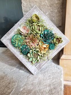 Succulent Diamond