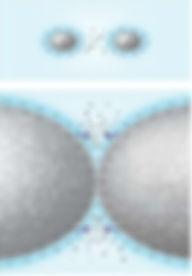 PAS2.jpg