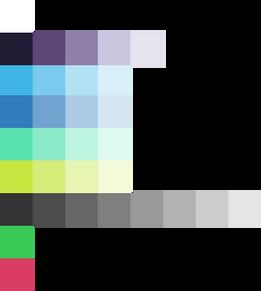 ng-colors copy.png