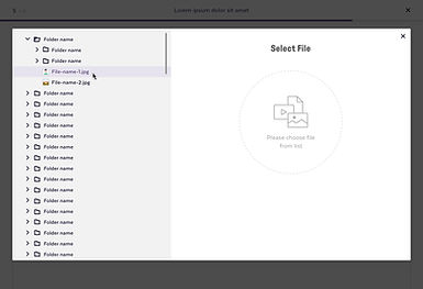CMS_Wizard_File-select_overlay_1_hover-1