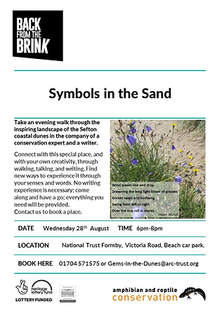 Symbols in the Sand poster.jpg.png