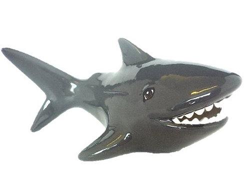Shark Money Box