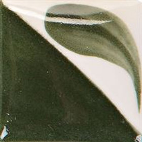 11 Dark Kiwi