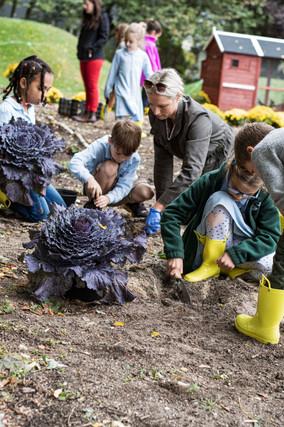 TSH Gardening Cabbage Kids Sandy3_DSC513