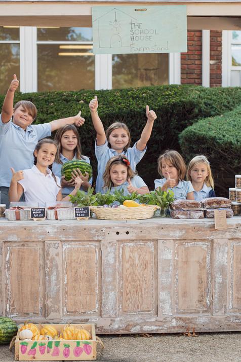 Farmstand Long Island The School House Learners Action