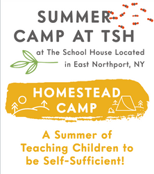 THS Summer Camp Long Island Ages 3-12.pn