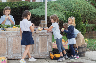 Farmstand Selling12 H actionThe School H