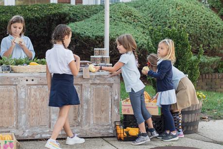 Farmstand Long Island The School House