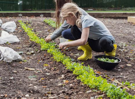 TSH Gardening Mesculin Girls2_DSC5150.jp