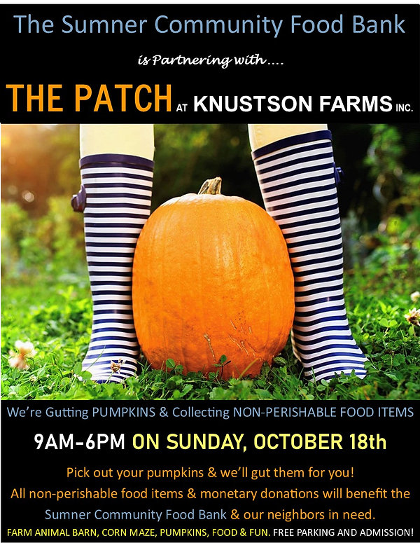Pumpkin Gutting.jpg
