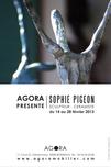 SOPHIE PIGEON - Affiche 40x60cm