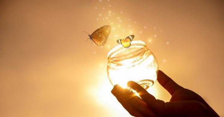 evgeny_terentev-water_butterflies1.jpg
