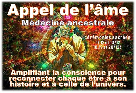 medecine chamanique LOGO.png