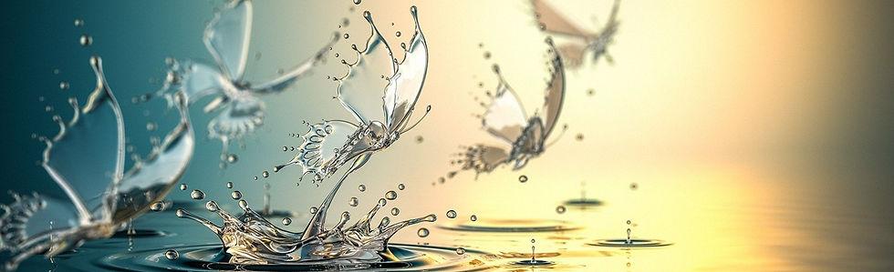 evgeny_terentev-water_butterflies3.jpg