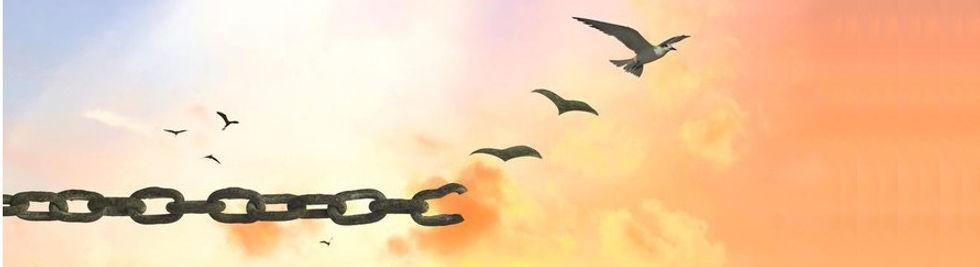 oiseau chaines.jpg