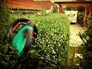 Prüller Baggerungen Winterdienst Gartenpflege Heckenschneiden Rasenmähen 3361 Aschbach Amstetten Niederösterreich Bagger Radlader Baustelle