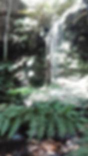 Waterfalls-Hazelbrook.jpg