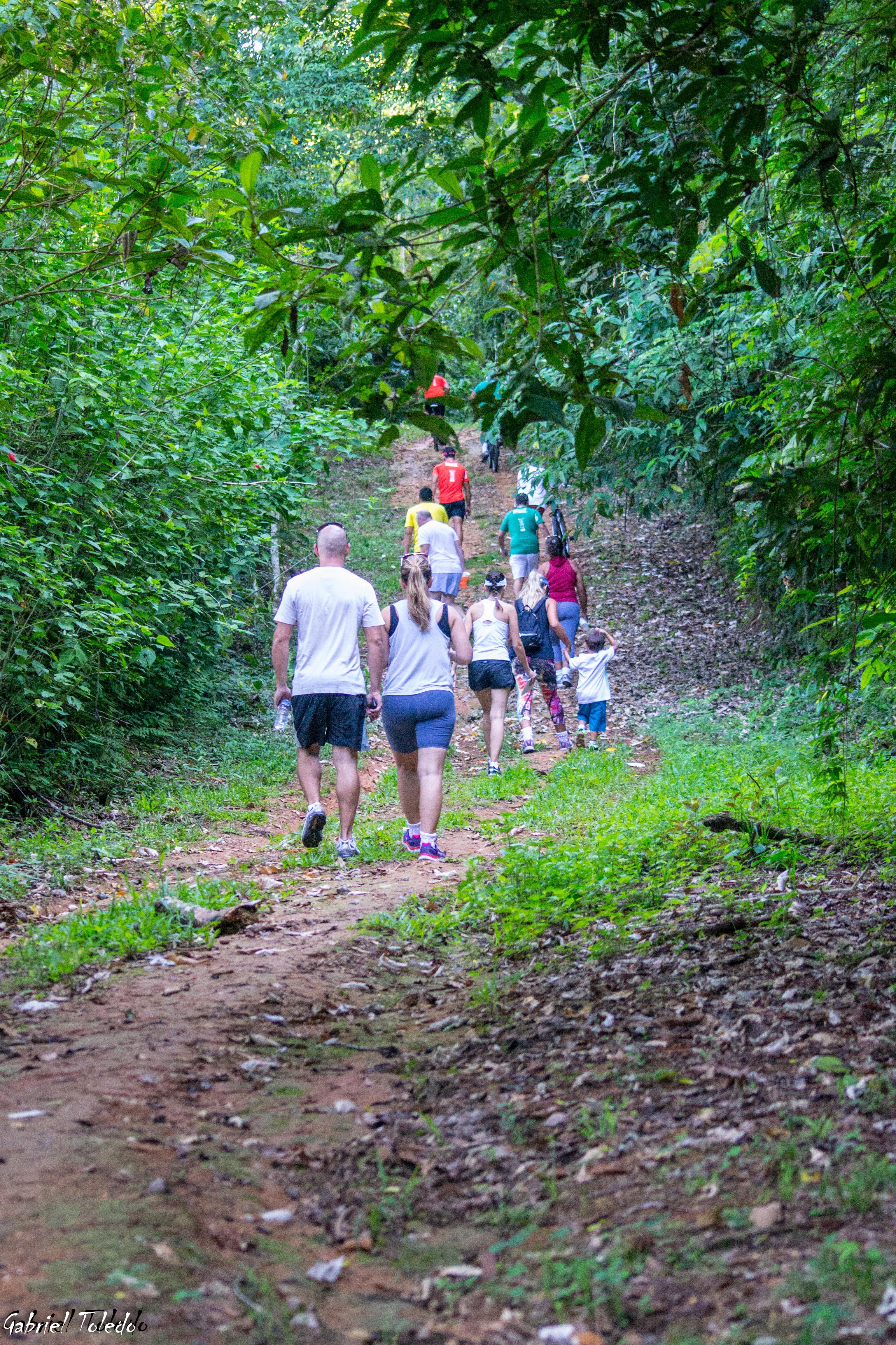 Grupo fazendo caminhada ecológica no