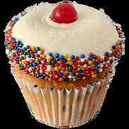 DNSD Birthday cake.png